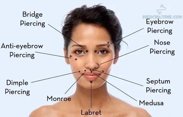 Facial Piercing Bites Chart